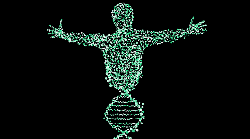 Illustration for article titled Una IA identifica una población fantasma de ancestros humanos desconocida hasta la fecha
