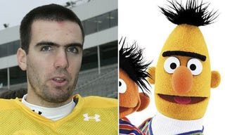 Illustration for article titled Who Dares To Tamper In Joe Flacco's Unibrow Domain?
