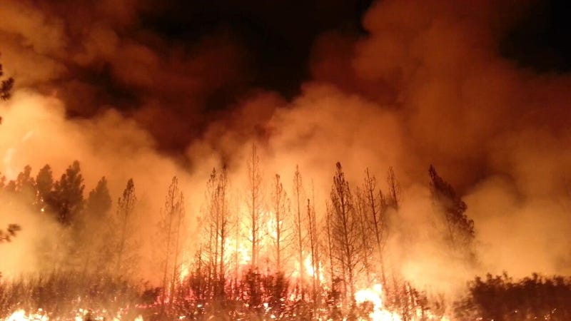 The Rim Fire in the Stanislaus National Forest, in August 2013