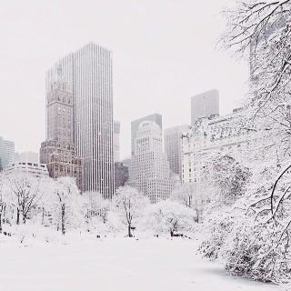 Illustration for article titled New York looks gorgeous in the snow—for five minutes, in Central Park