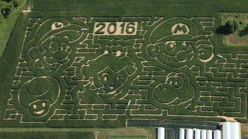 Super Mario Bros. Corn Maze (Image: imgur.com/bFnK9uj)