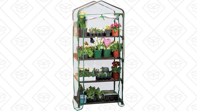 Gardman 4-Tier Mini Greenhouse, $20