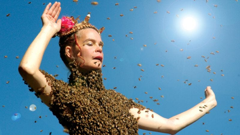 Illustration for article titled Queen Of The Sun: What Are The Bees Telling Us?