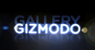 Illustration for article titled Gizmodo Gallery 2009: The Details