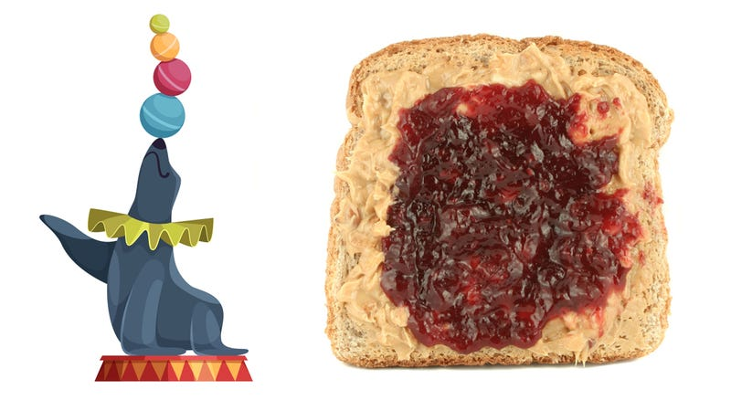 Illustration for article titled It's peanut butter jelly time—but not for seals, dear god