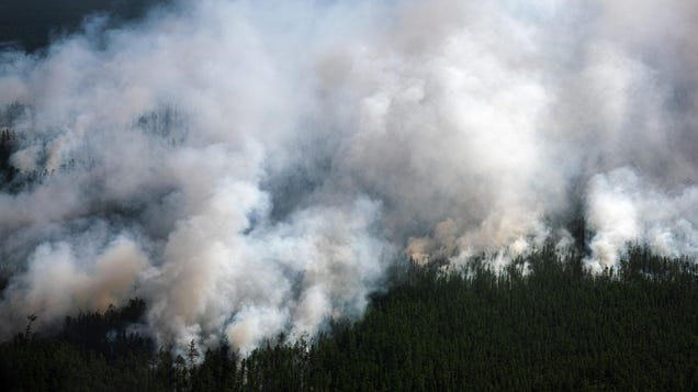 Smoke From Siberian Wildfires Has Reached the North Pole