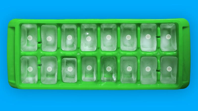 Illustration for article titled A Field Guide to Freezing Your Eggs