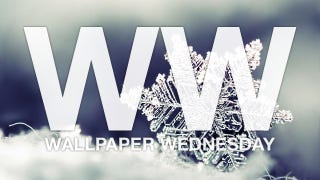 Illustration for article titled Cover Your Desktop in Snow with These Wallpapers