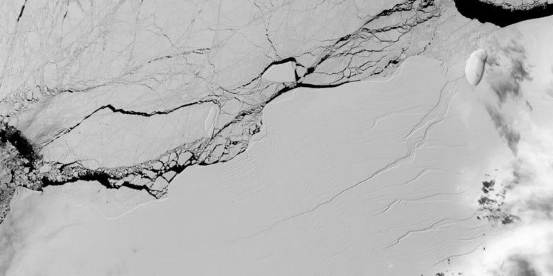 Imagen: EPA/NASA/USGS Landsat