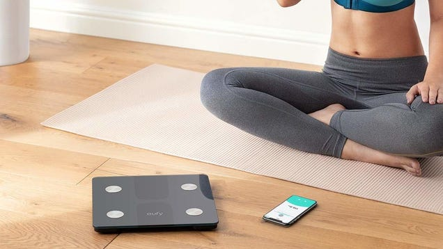 Anker s New Bluetooth Smart Scale Is Just $29, If You Can Bear to Look At It
