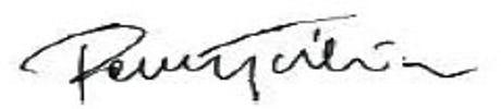 Pawel Test logo