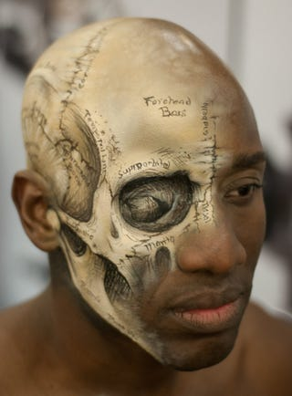 Illustration for article titled Lovely medical illustration of the human skull painted directly on a human head