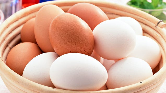 What's the Difference Between Brown and White Eggs?