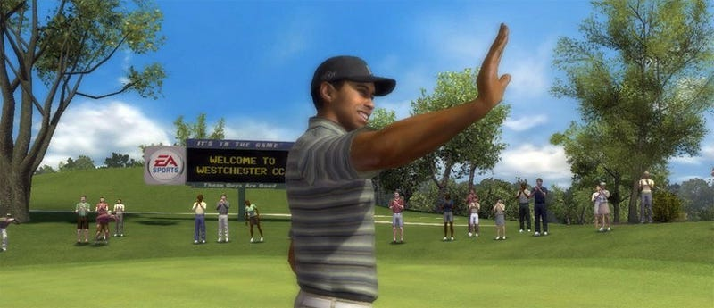 Illustration for article titled EA Brings Motion Plus To Tiger Woods, Tennis