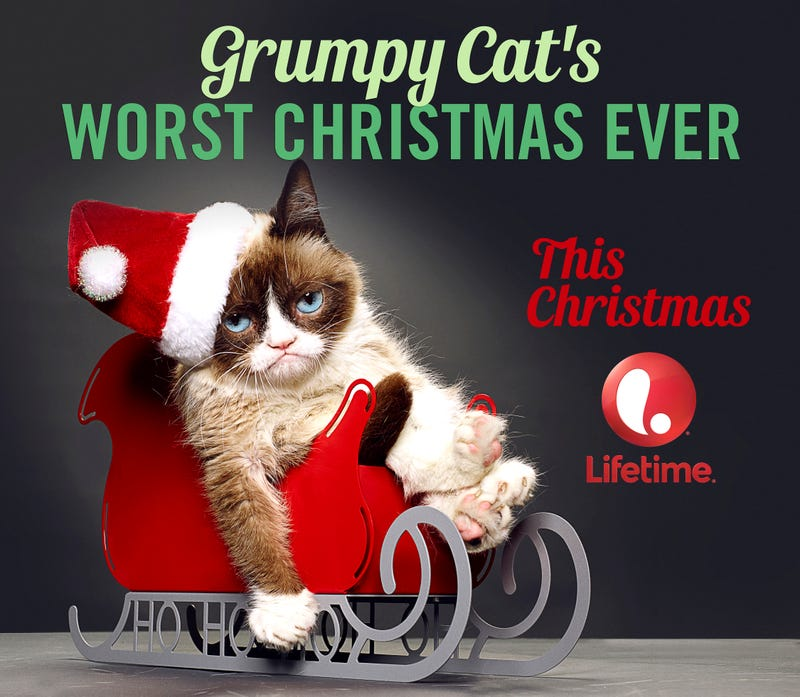 Illustration for article titled 5 Reasons Why I Can't Help But Watch Grumpy Cat's Christmas Movie