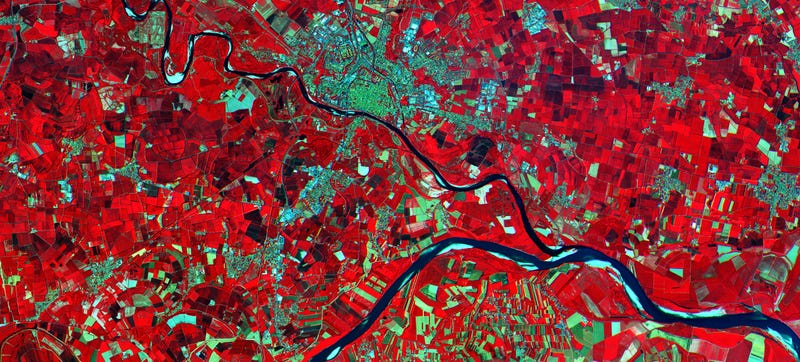 Illustration for article titled These Are the First Images From ESA's Sentinel-2A Satellite