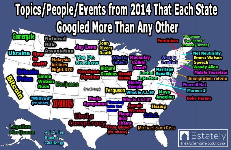 Illustration for article titled Here Is What We Googled in 2014, State by State