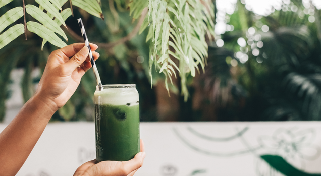 What Happens in Your Body During a  Cleanse  or  Detox