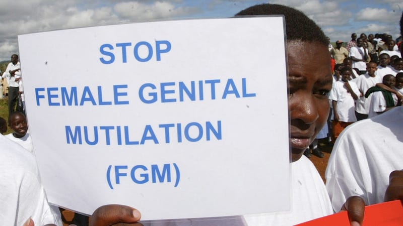 Illustration for article titled Investigation Exposes Awful U.K. Doctors Willing to Perform FGM