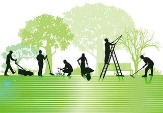 Steps to start a gardening business
