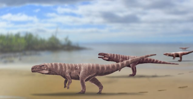 Ancient Two-Legged Crocodile Left Behind These Awesome Footprints