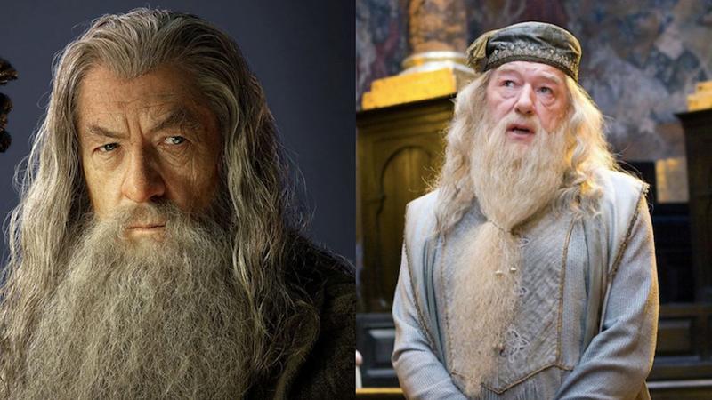 Ian McKellen as Gandalf, Michael Gambon as Dumbledore.