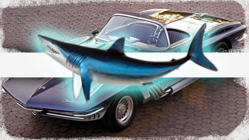 Illustration for article titled The Hopefully True Story About The 1963 Corvette And A Headless Shark