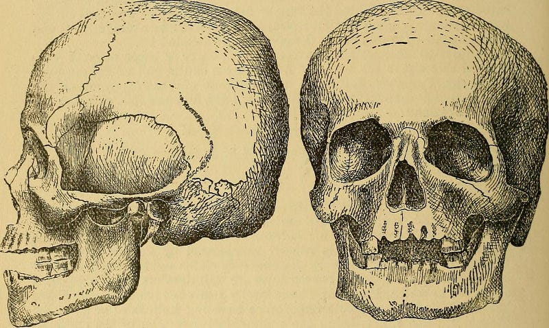 Image: Internet Archive Book Images/Flickr