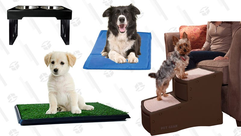 Illustration for article titled Seven Products That Will Make Your Senior Dog's Life So Much Easier