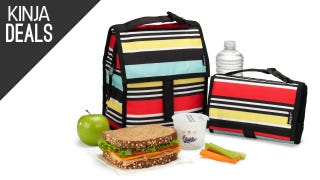 This $15 Lunch Bag Has Ice Packs Built Right In
