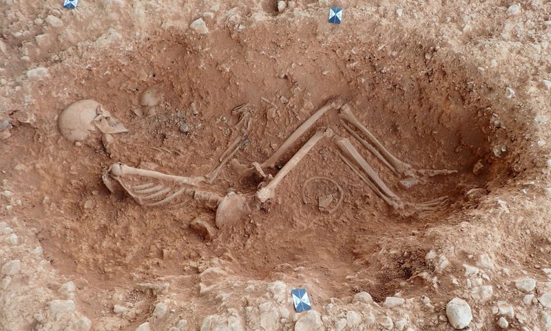 A skeleton uncovered at the site.