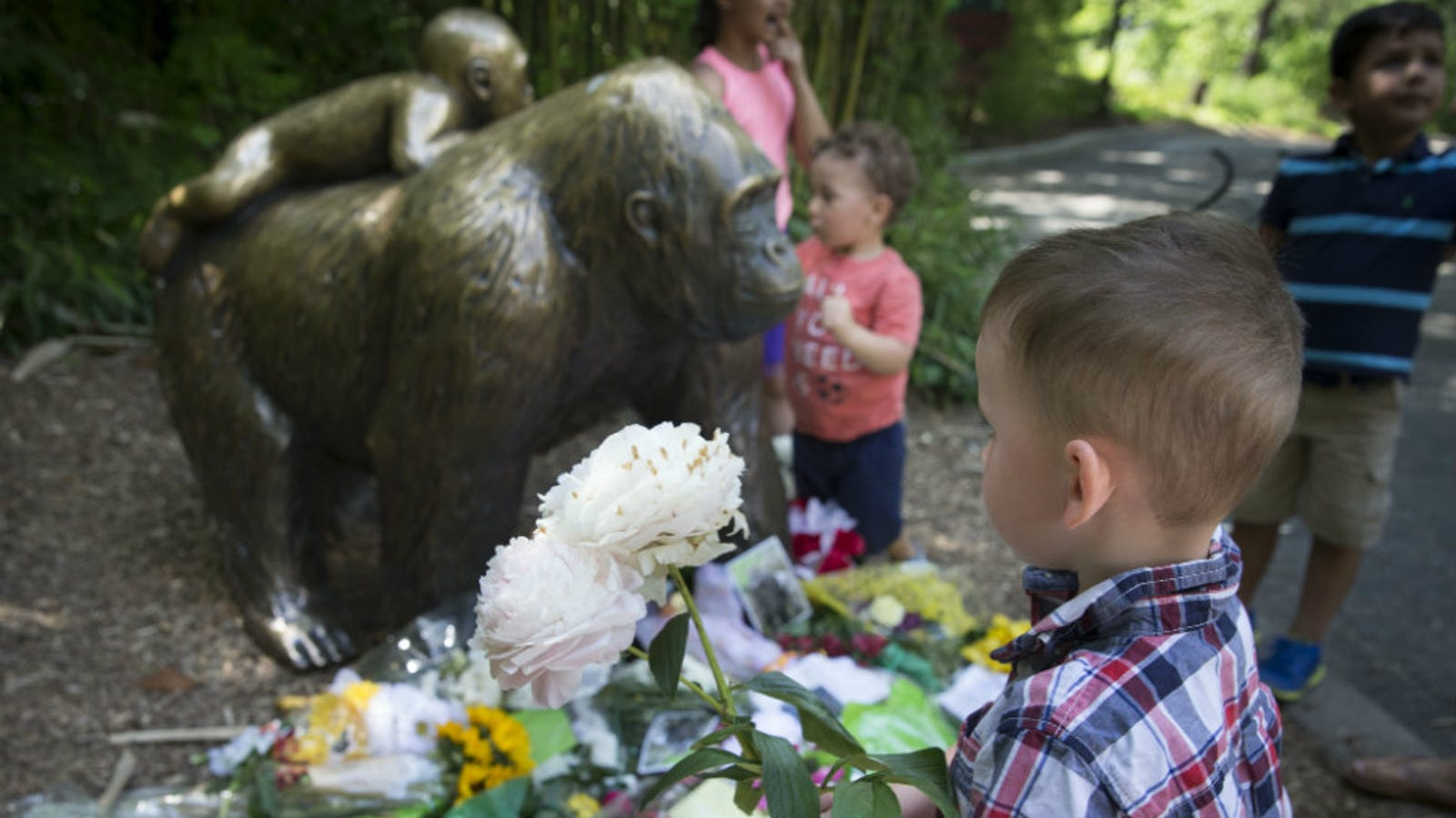Outraged Gorilla-Lovers Are Threatening the Wrong Michelle Gregg on
