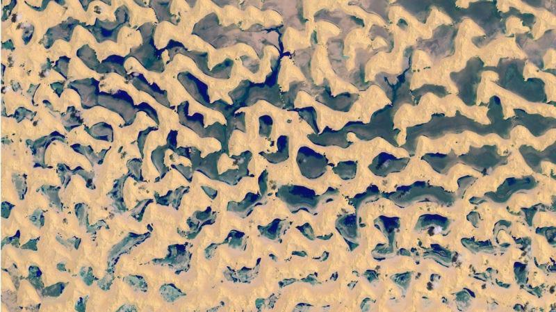 Illustration for article titled El desierto de arena más grande del mundo ahora está cubierto de lagos tras el paso de un ciclón tropical