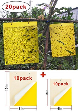 Illustration for article titled Give YourGarden and Orchard Peaceful World with ThisDual-Sided Yellow Sticky Traps