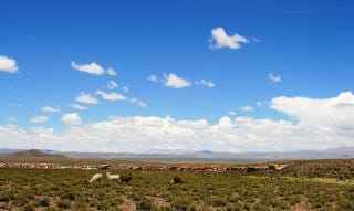 Illustration for article titled Los Andes centrales podrían secarse antes de 2100 por el cambio climático