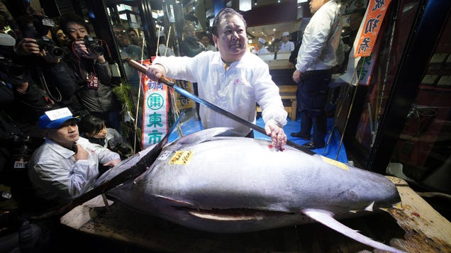 Japanese Sushi Magnate Kicks Off 2019 by Ridiculously Overpaying for Bluefin, Regretting It