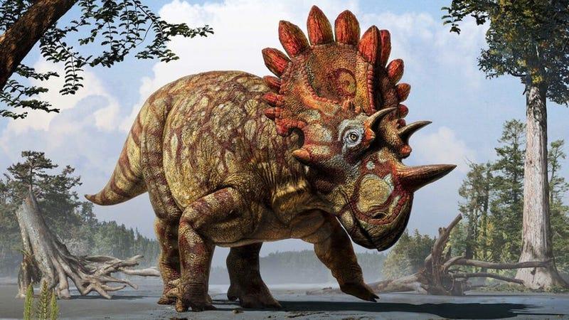 Illustration for article titled Hallan restos fósiles de un exótico pariente del triceratops