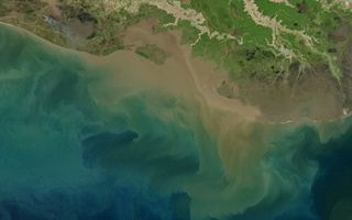 Algae blooms in the Gulf of Mexico are fueled by nutrient runoff from rivers, but also by contaminated groundwater. Image: NASA Earth Observatory