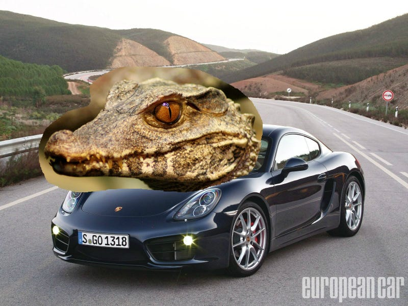 Illustration for article titled This Porsche Caiman S is sweet.