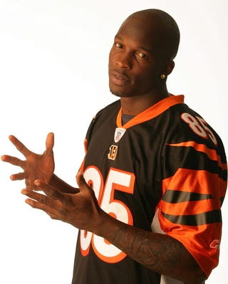 Illustration for article titled Chad Ochocinco Is Looking For A Classy Broad