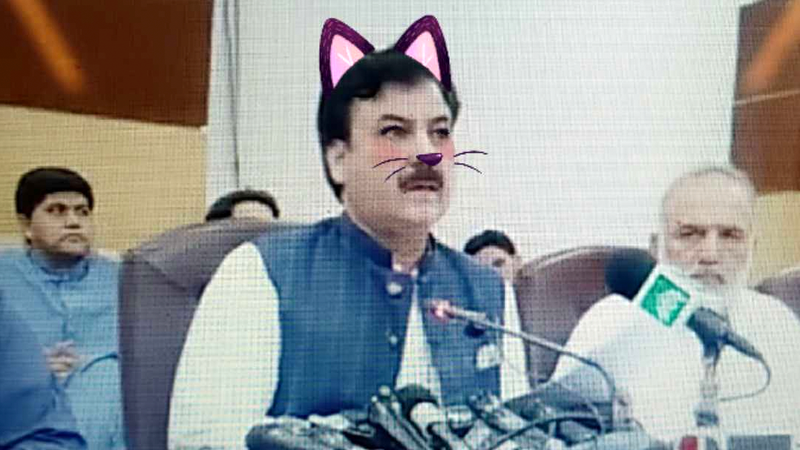 Accidental Kitty Cat Filter Undermines Pakistani Minister's Serious Livestream