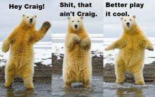 Illustration for article titled polar bear