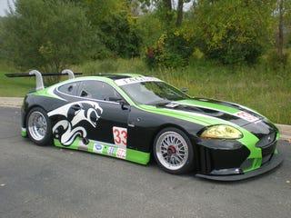 Illustration for article titled Jaguar XKR GT3 Racer: Cat Track Fever