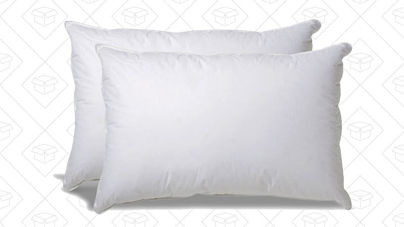 Overfilled Down Alternative Pillow 2-Pack, $40