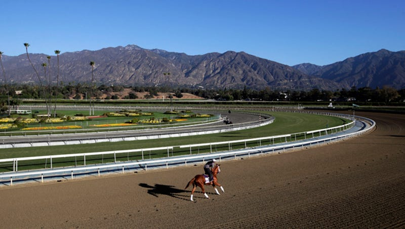 30th Horse Dies At Santa Anita; Hall Of Fame Coach Banned From Track