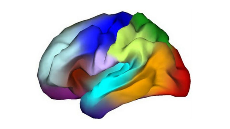 Illustration for article titled Genetic Atlas Yields a Brainbow of Cognitive Information