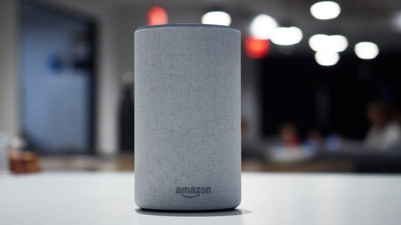 Amazon Echo | $80 | AmazonAmazon Echo + Philips Hue Starter Kit | $250 | AmazonAmazon Echo + TP-Link Smart Plug | $85 | Amazon