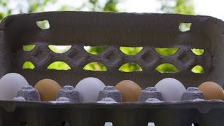 Illustration for article titled Brown Eggs Aren't Better for You Than White Eggs, They Just Cost More