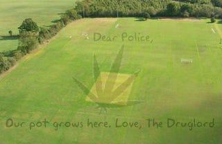 Illustration for article titled Swiss Police Uncover Hidden Marijuana Farm Using Google Earth