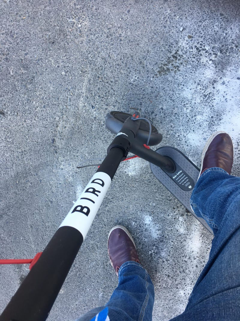 I Tried San Francisco's Electric Scooter Share And It Was A